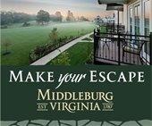 Make Your Escape: Visit Us Today!
