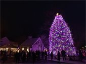 Virtual Town Christmas Tree Lighting