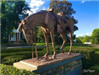 Horse Sculpture at National Sporting Library and Museum